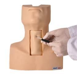Simulador de Traqueostomia - TGD-4058