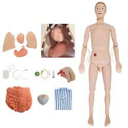 Manequim Bissexual com Órgãos Internos, Simulador para Treino de Enfermagem - TZJ-0502